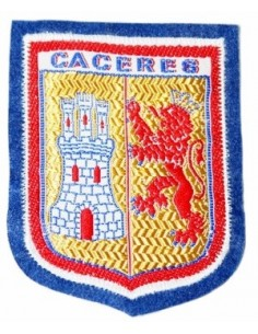 Thermo adhesive patch city of caceres.