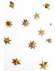 6-Branch Star