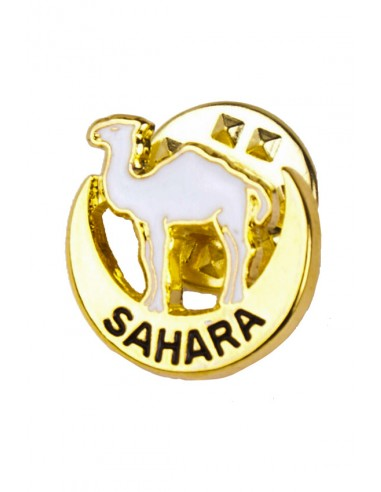 Pin Destino del Sahara Español