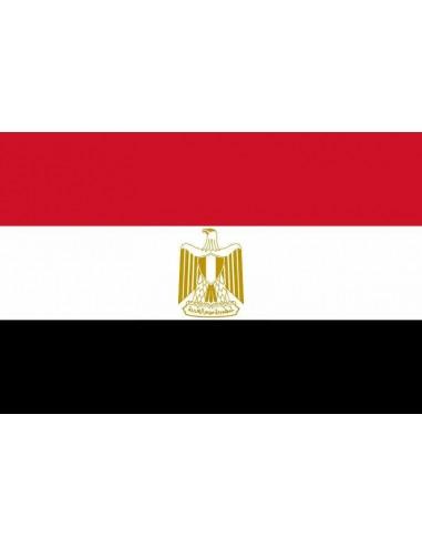 Bandera República Árabe de Egipto