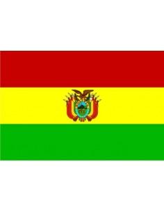 Bandera Estado Plurinacional de Bolivia