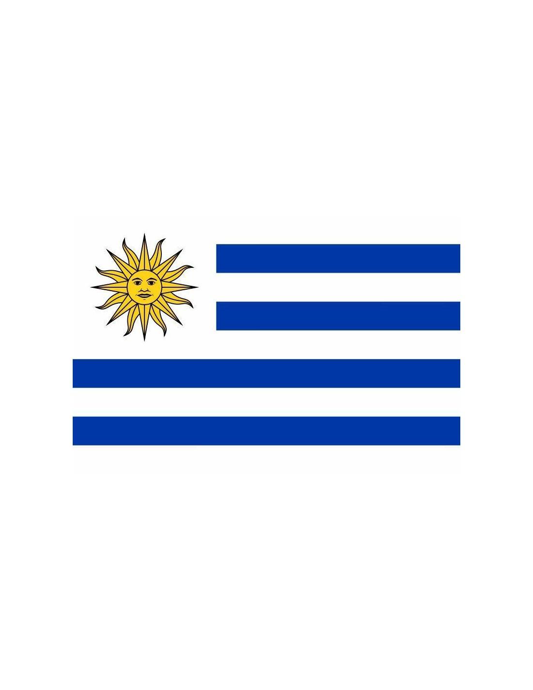 Bandera de la República Oriental del Uruguay en Raso de ...