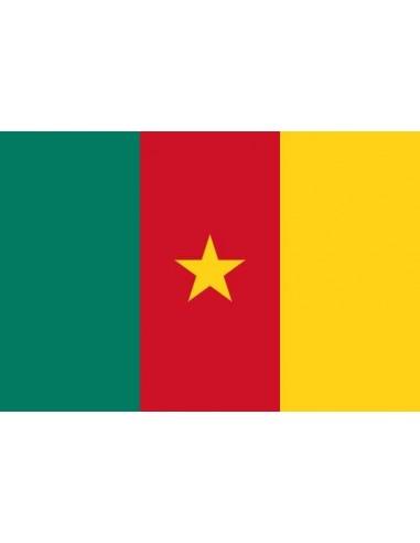 Bandera República del Camerún