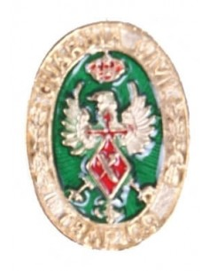 Pin Civil Guard Traffic