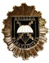 BRIPAC Badge